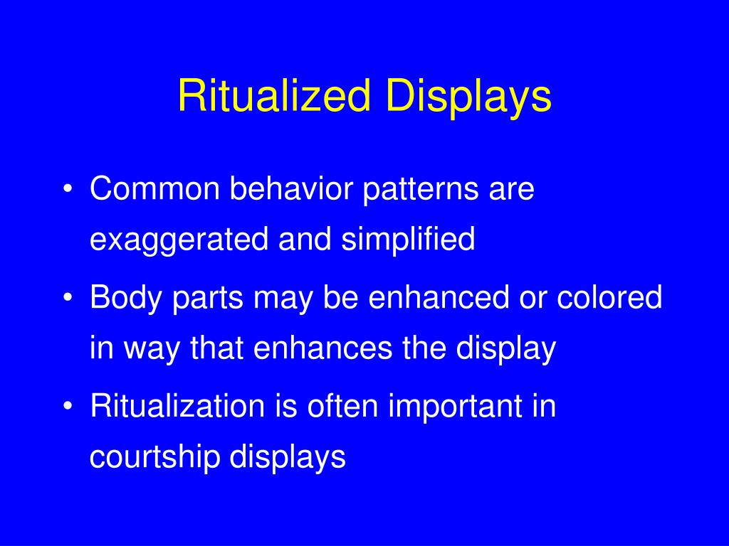 Ritualized Displays