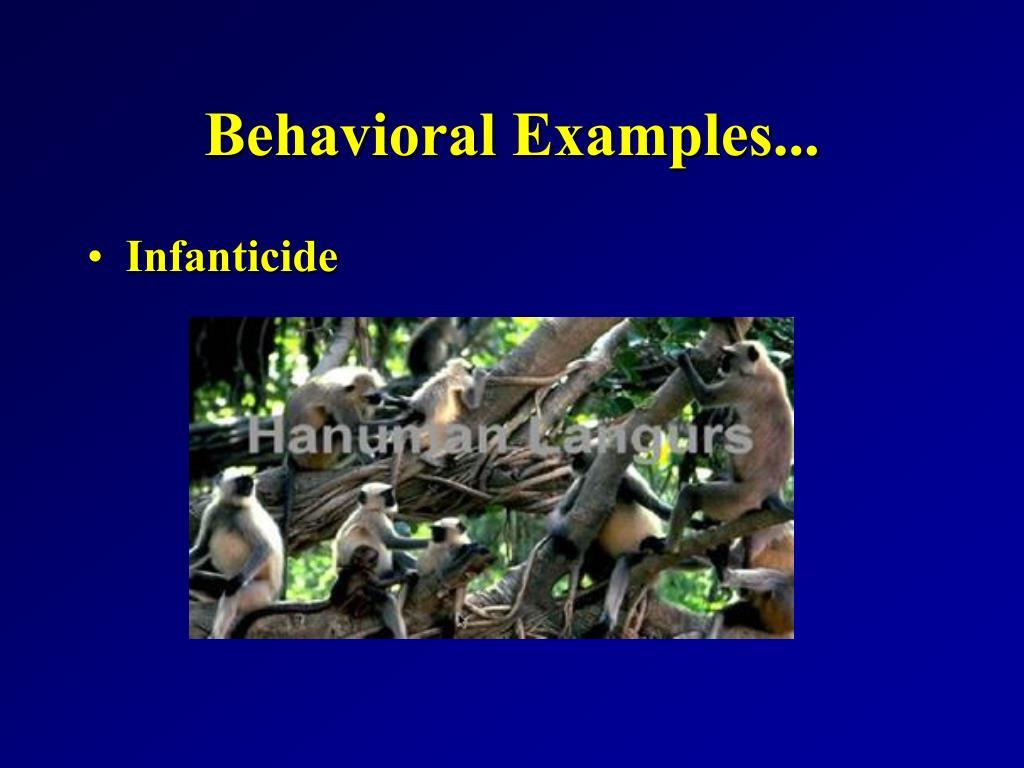 Behavioral Examples...