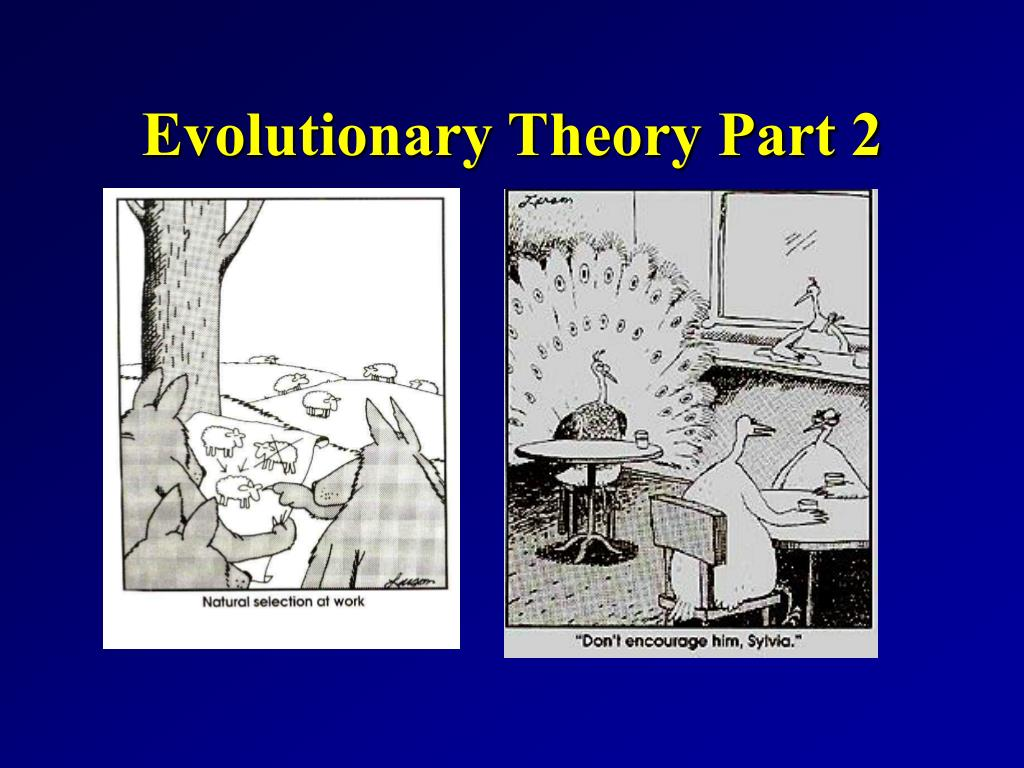 Evolutionary Theory Part 2