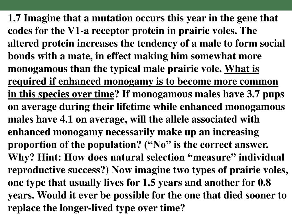 1.7 Imagine that a mutation occurs this year in the gene that codes for the V1-a receptor protein in prairie voles. The altered protein increases the tendency of a male to form social bonds with a mate, in effect making him somewhat more monogamous than the typical male prairie vole.