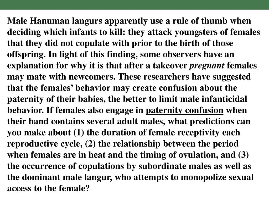 Male Hanuman langurs apparently use a rule of thumb when deciding which infants to kill: they attack youngsters of females that they did not copulate with prior to the birth of those offspring. In light of this finding, some observers have an explanation for why it is that after a takeover