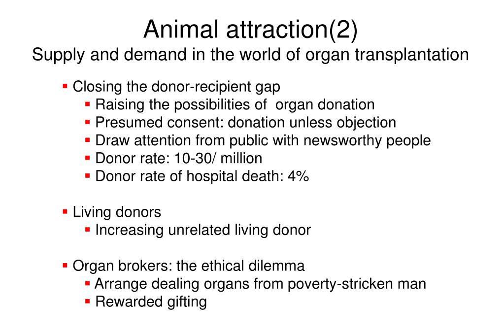 Animal attraction(2)