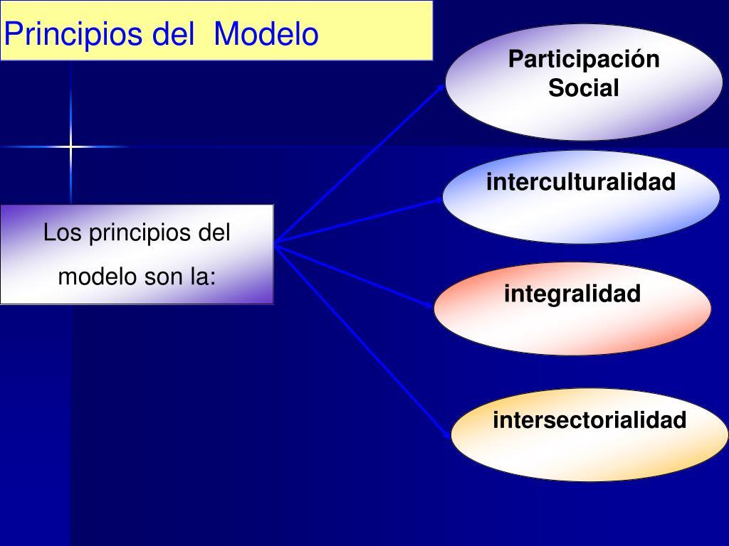 Principios del  Modelo