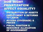 how might privatization affect equality