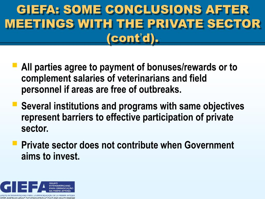 GIEFA: SOME CONCLUSIONS AFTER MEETINGS WITH THE PRIVATE SECTOR (cont