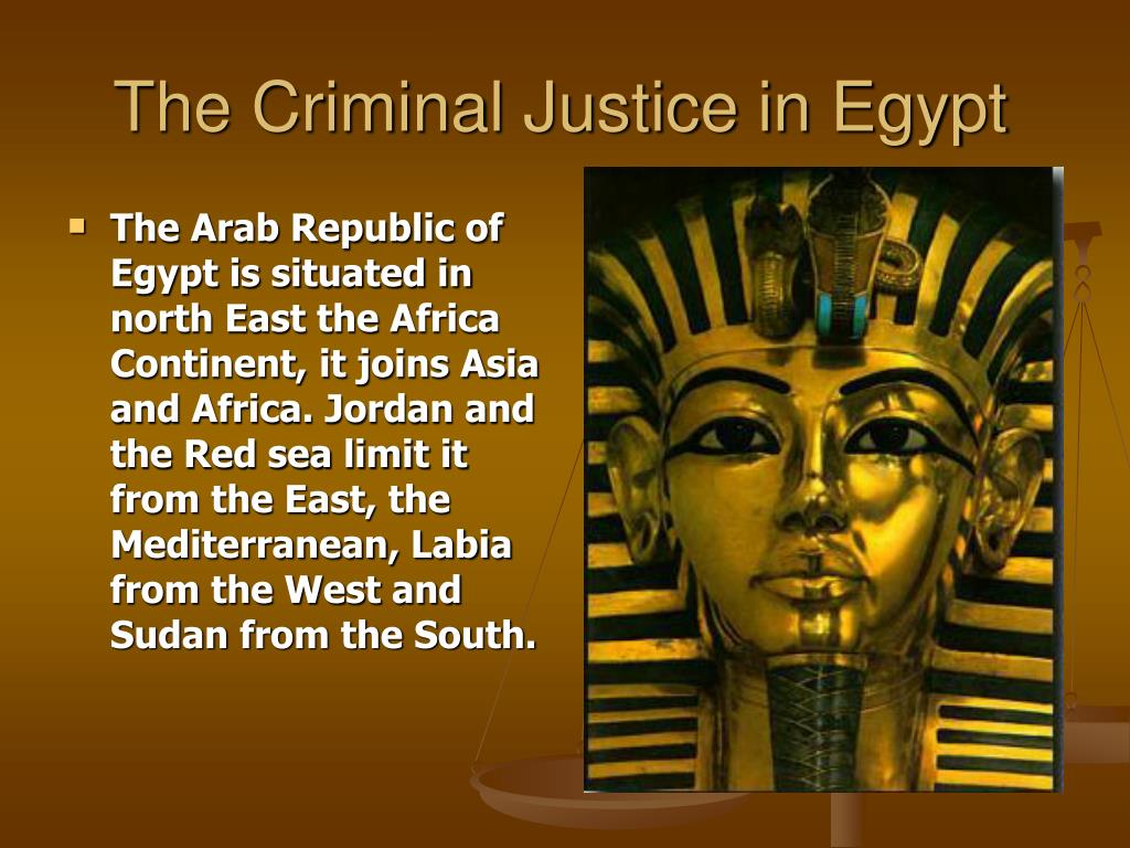 the criminal justice in egypt l.