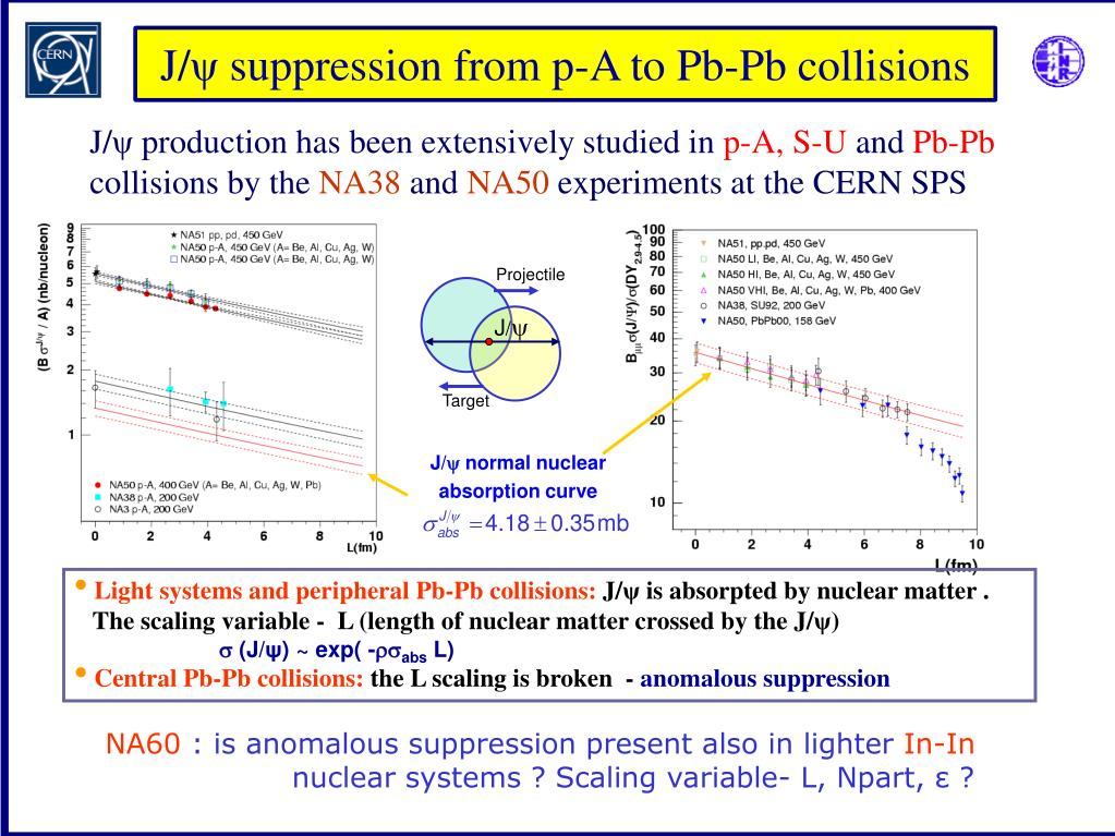 Light systems and peripheral Pb-Pb collisions: