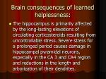 brain consequences of learned helplessness