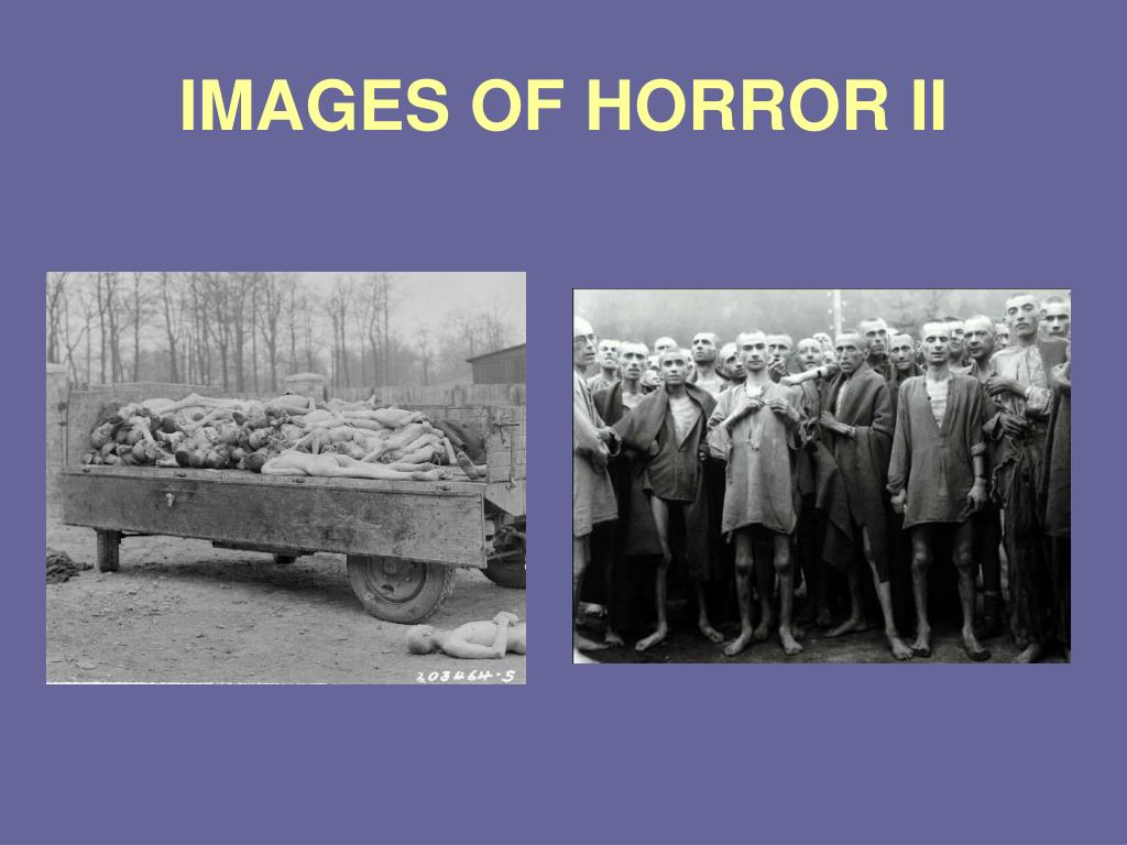 IMAGES OF HORROR II