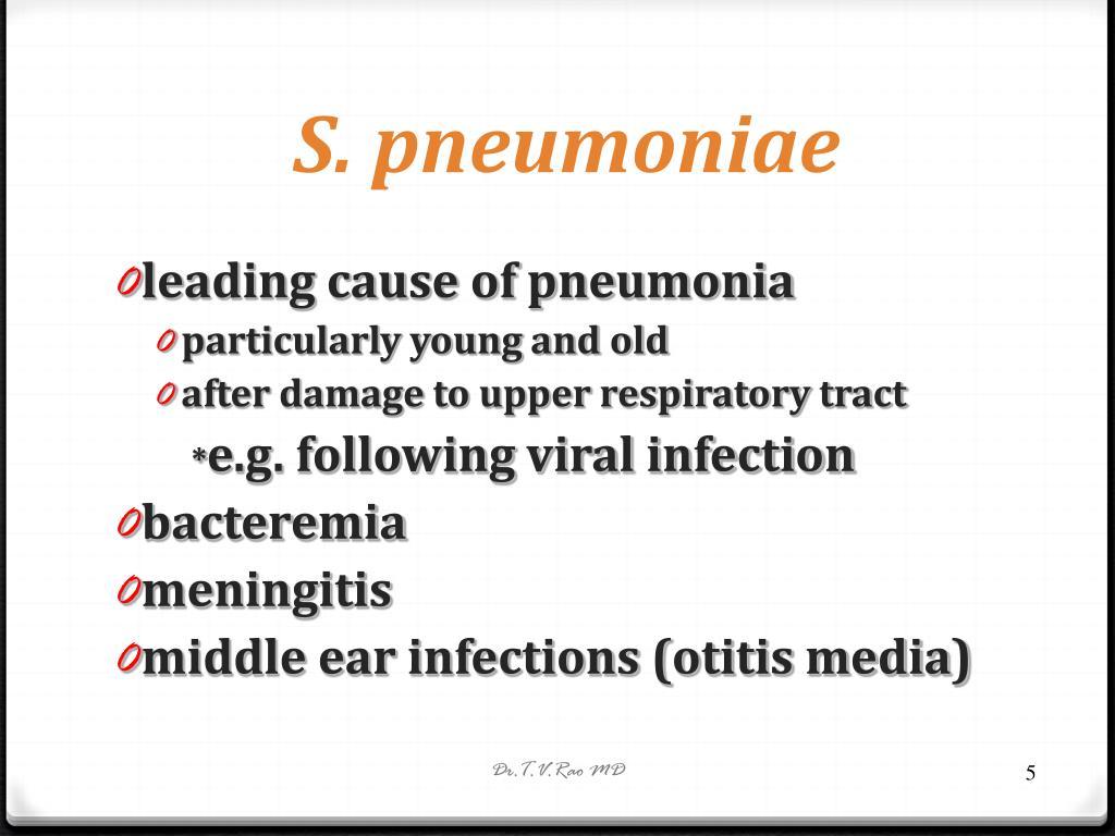 S. pneumoniae