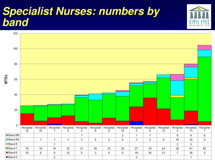Specialist Nurses: numbers by band