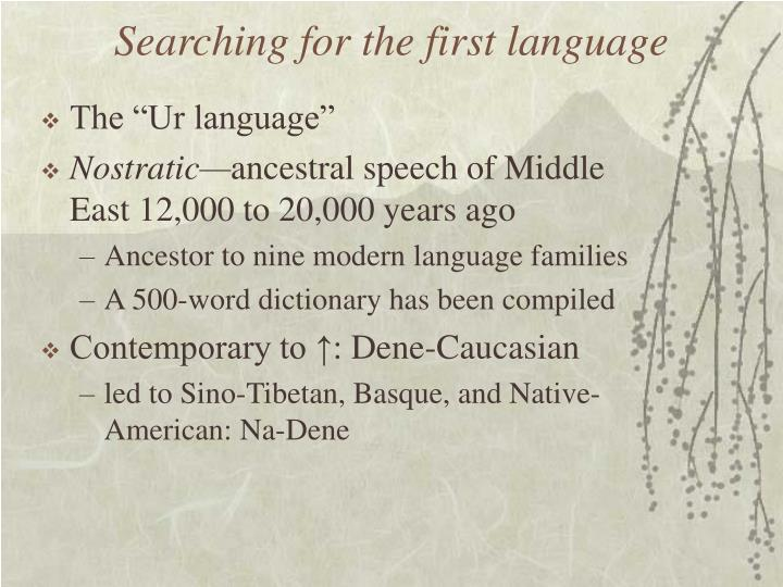 Searching for the first language