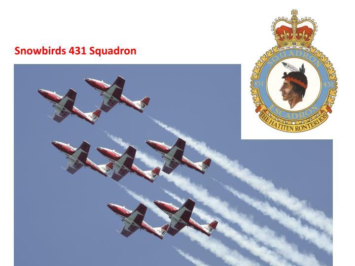 Snowbirds 431 Squadron