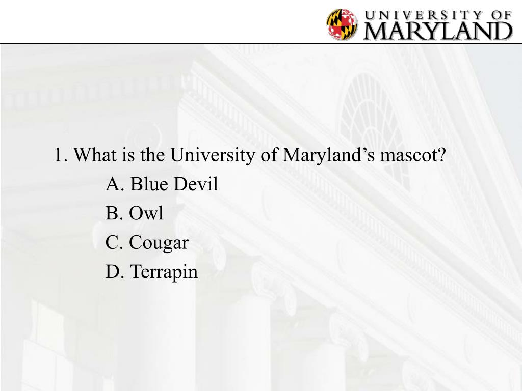 1.	What is the University of Maryland's mascot?