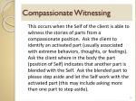compassionate witnessing