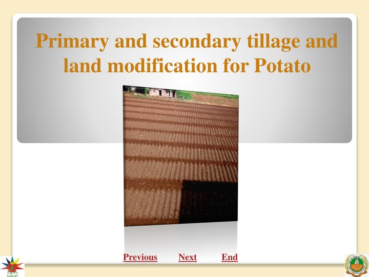 primary and secondary tillage and land modification for potato n.