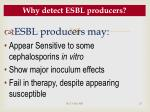 why detect esbl producers