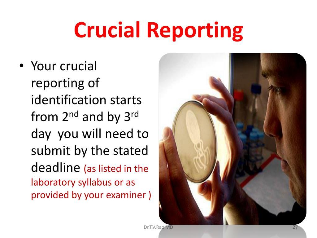 Crucial Reporting