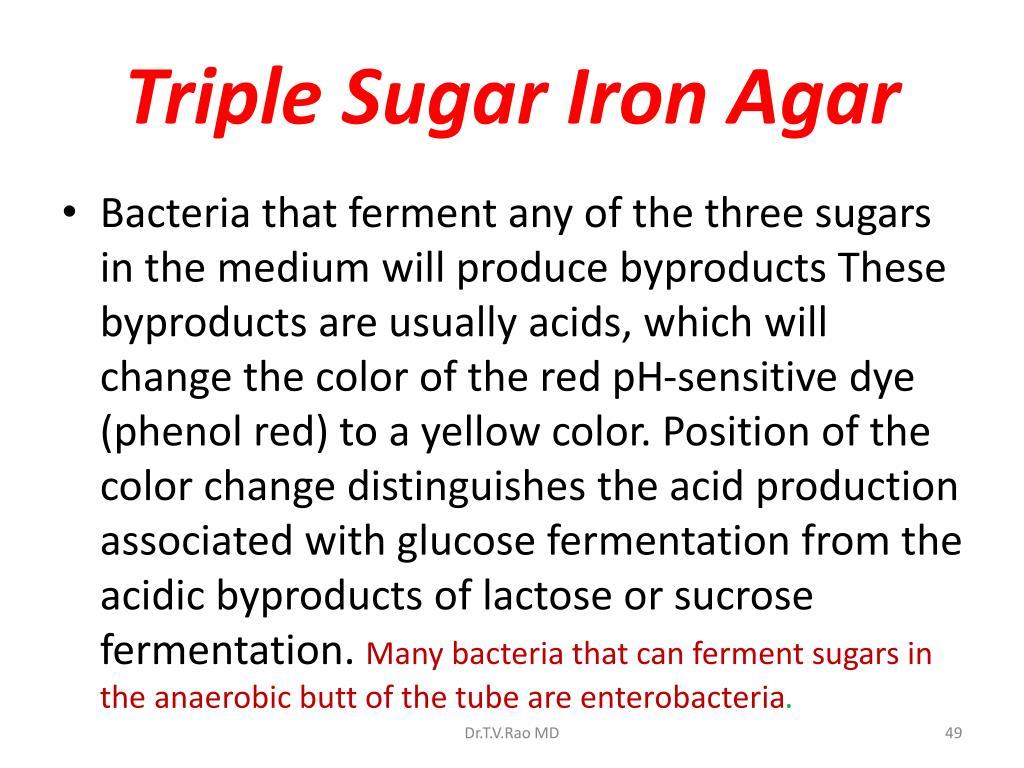 Triple Sugar Iron Agar