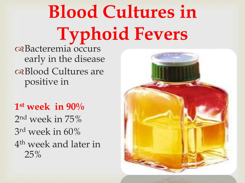 Blood Cultures in Typhoid Fevers
