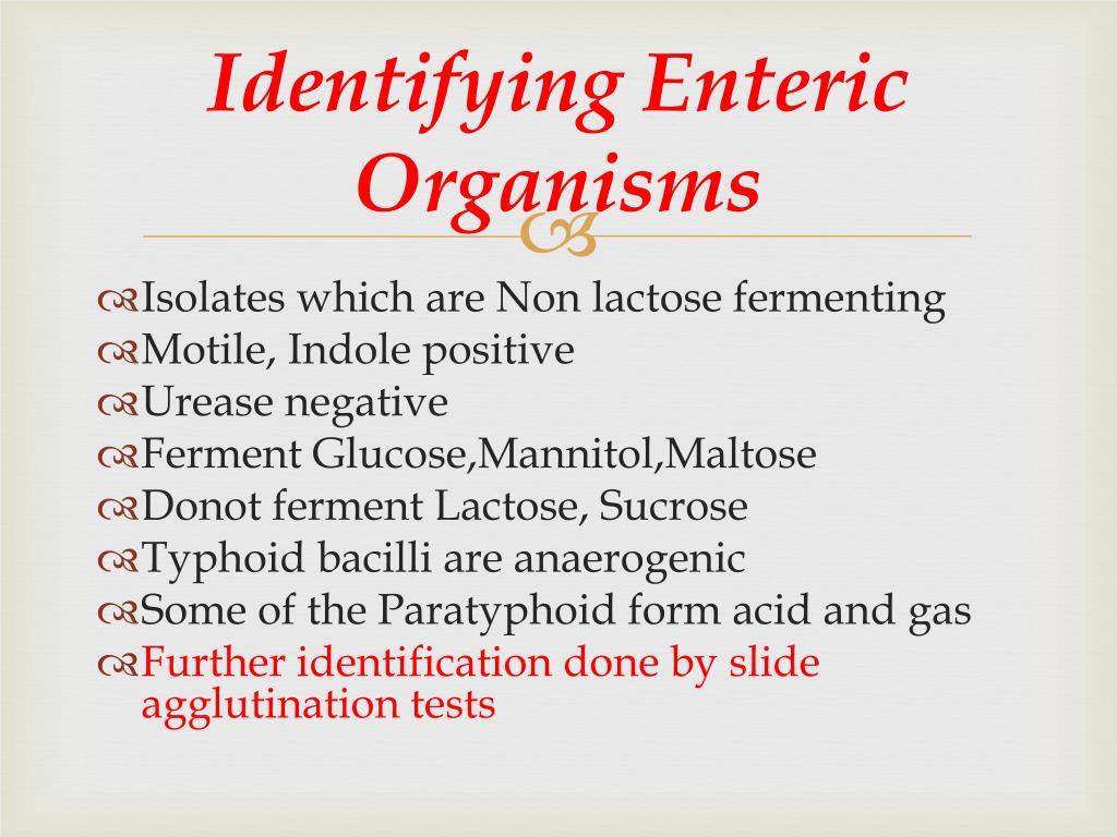 Identifying Enteric Organisms