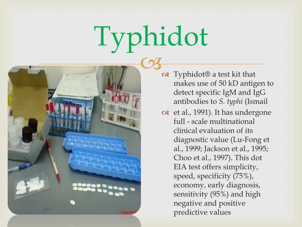 Typhidot