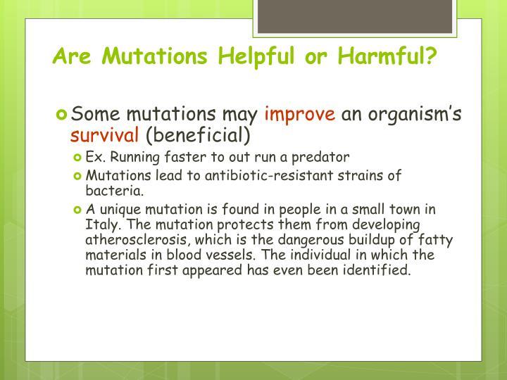 Are Mutations Helpful or Harmful?