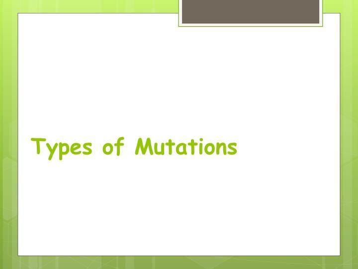 Types of Mutations