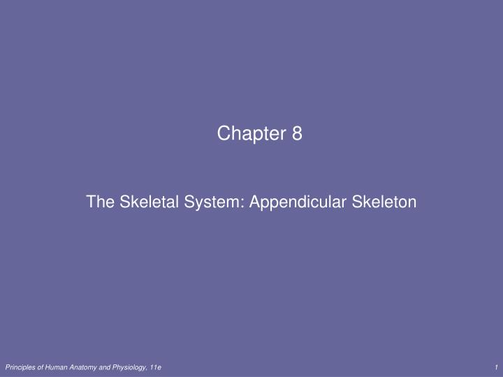 Chapter 8 Anatomy And Physiology - Anatomy Diagram Book