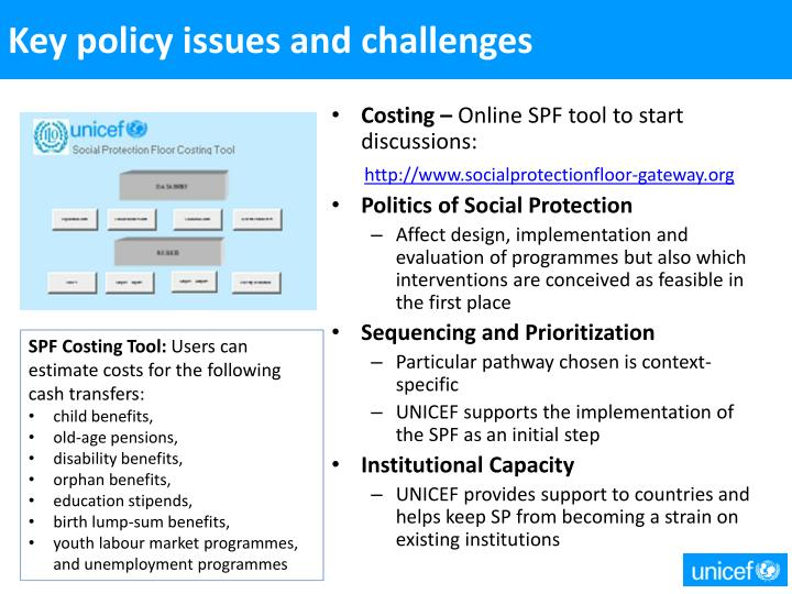 Key policy issues and challenges
