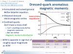 dressed quark anomalous magnetic moments3