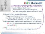 q c d s challenges