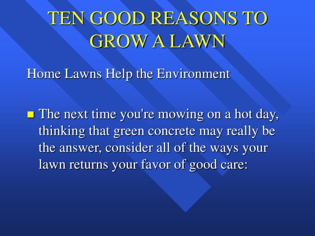 TEN GOOD REASONS TO GROW A LAWN
