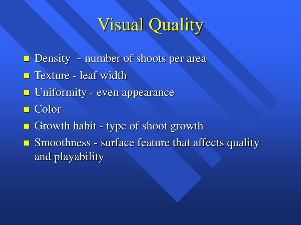 Visual Quality