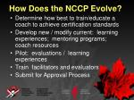 how does the nccp evolve