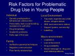 risk factors for problematic drug use in young people