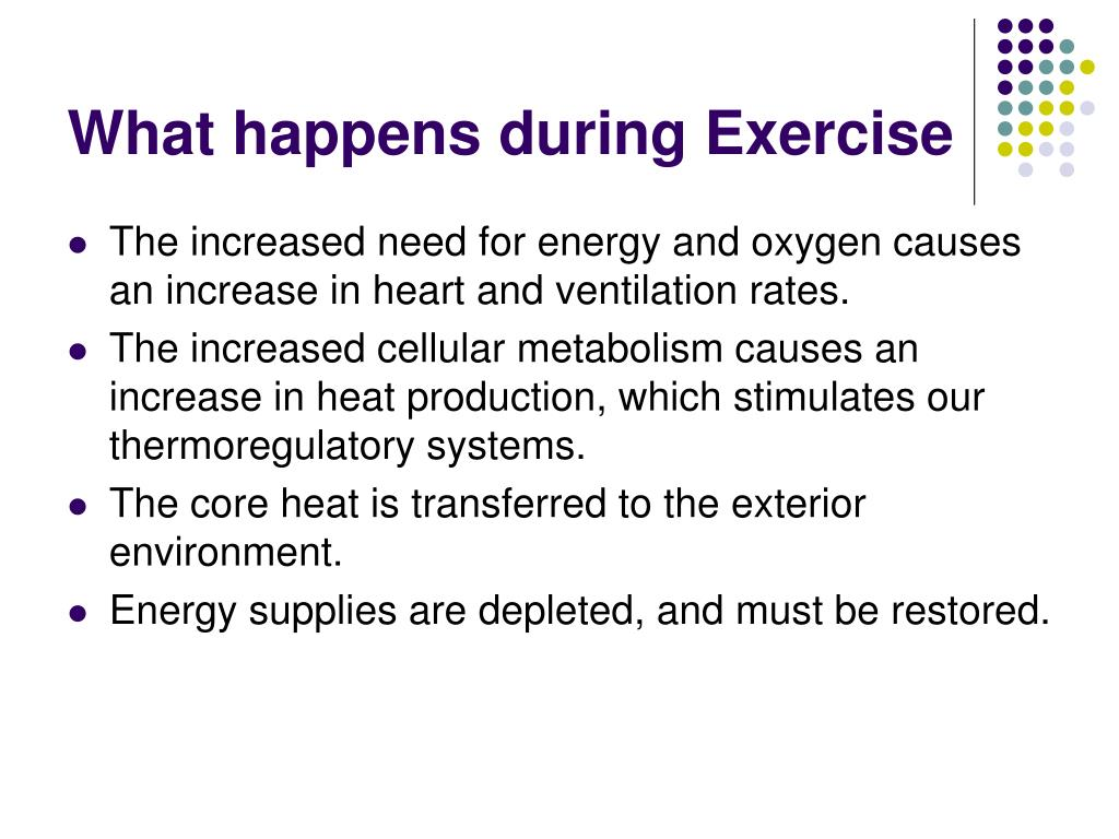 What happens during Exercise