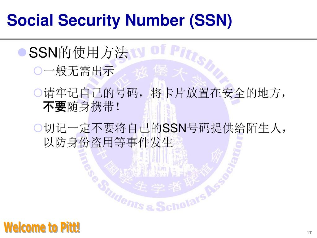 Social Security Number (SSN)