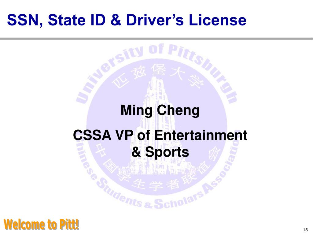 SSN, State ID & Driver's License
