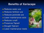 benefits of xeriscape