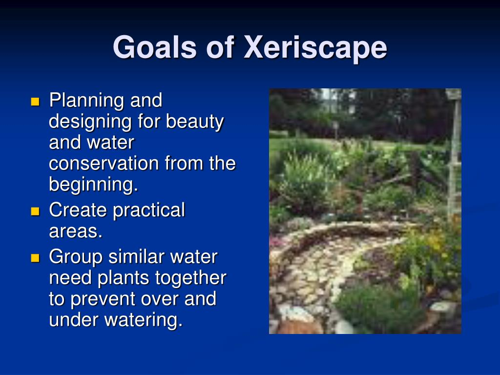 Planning and designing for beauty and water conservation from the beginning.