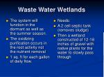 waste water wetlands