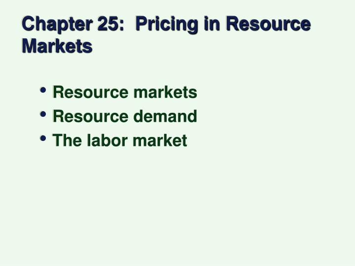 chapter 25 pricing in resource markets n.