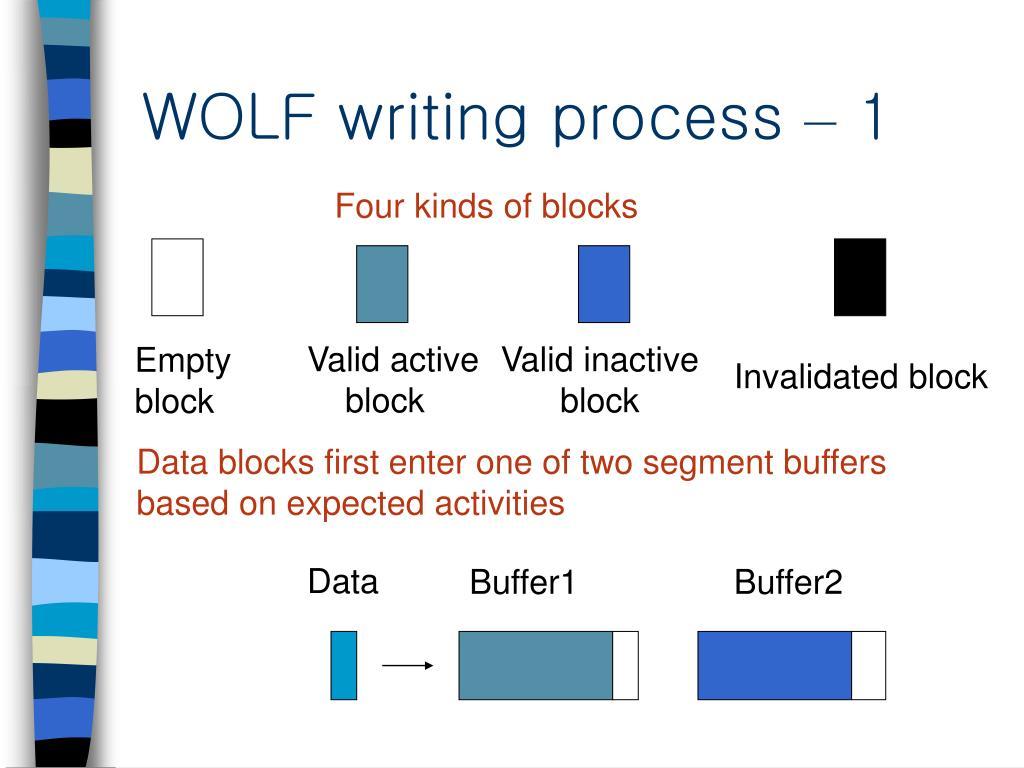 WOLF writing process