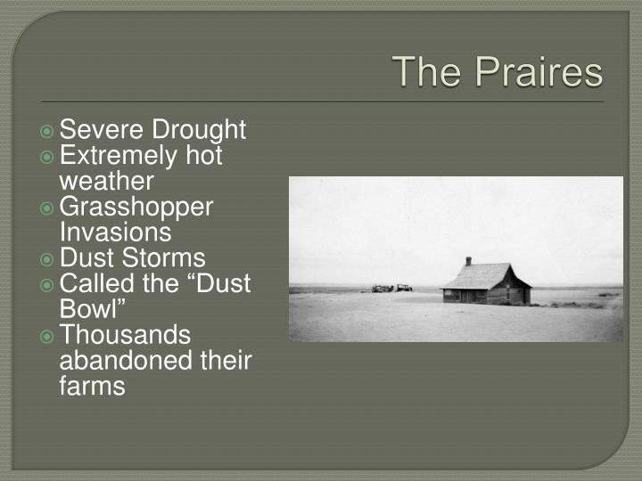 The praires