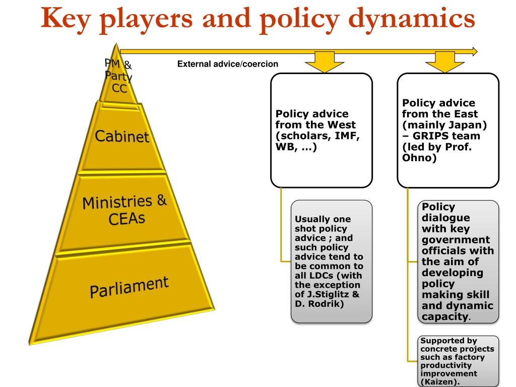 Key players and policy dynamics