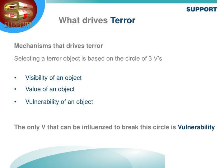Mechanisms that drives terror