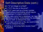 self descriptive data cont