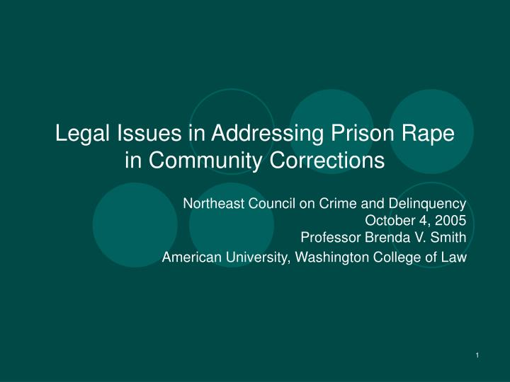 legal issues in addressing prison rape in community corrections n.