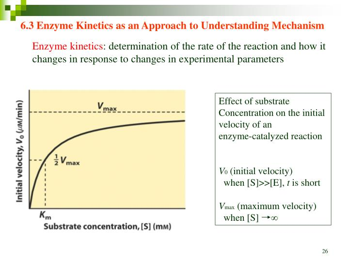 6.3 Enzyme Kinetics as an Approach to Understanding Mechanism